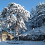 What are the Top 10 Hill Stations in India