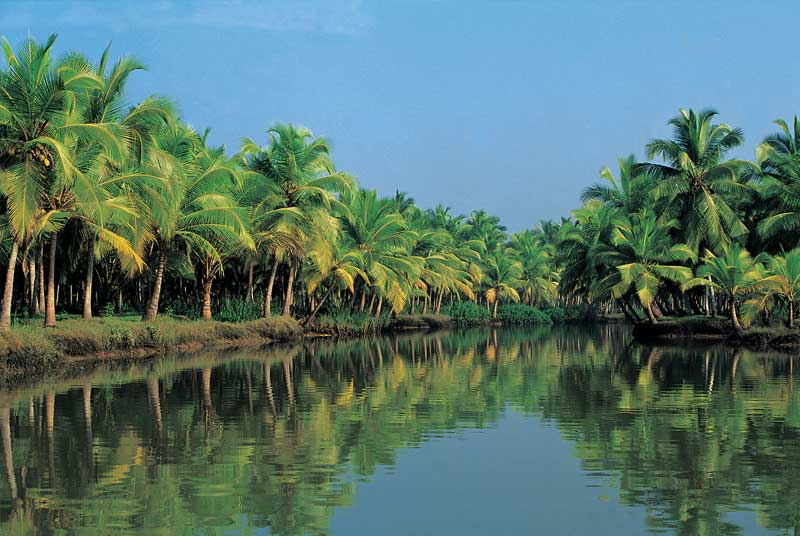 kerala- the beautiful place to visit