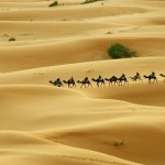 Top Great Indian Deserts
