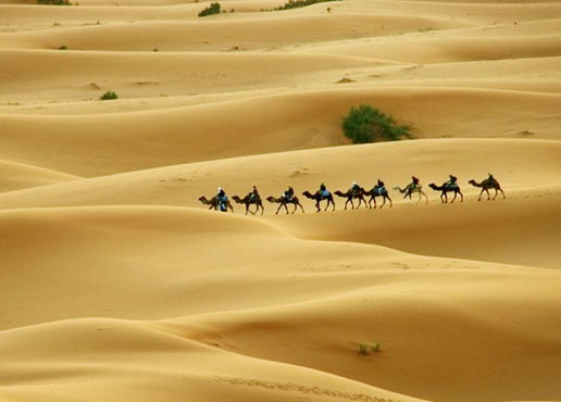 great indian deserts
